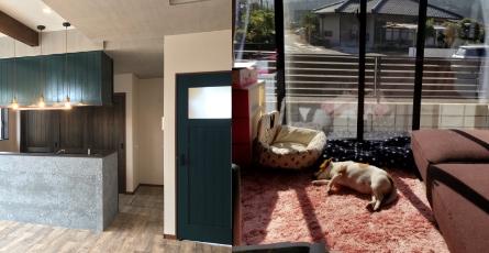 ペット宿泊・お泊まりの施設の写真