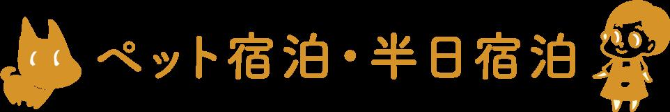 宮崎県のペットホテル・ペット宿泊ケージに入れずお泊まり。犬・猫などのペットのお世話専門店
